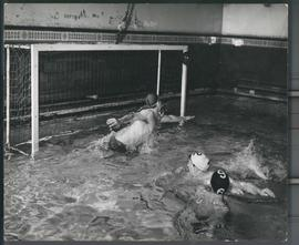 Photograph: Water Polo
