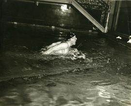 Photograph: Swimming