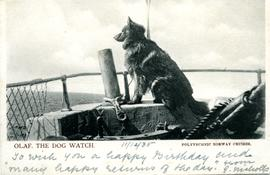 Postcard: 'Olaf. The Dog Watch', Norway